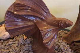 Pâques-2019-Nicolas-Paciello-Prince-de-Galles-Paris-création-chocolat