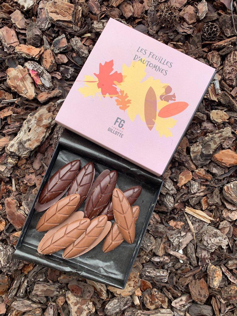 Les feuilles d'automne, Fabrice Gillotte
